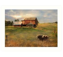 Northumberland County Farm Art Print