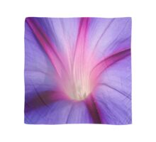 Lilac and Fuschia Morning Glory in Macro Scarf