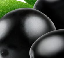 Three black olives with leaves Sticker