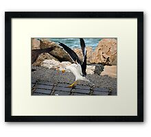 Touch Down Framed Print