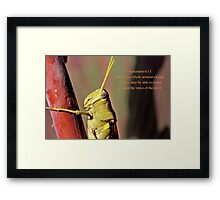 Put on the whole armour of God. . . Framed Print
