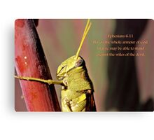 Put on the whole armour of God. . . Canvas Print