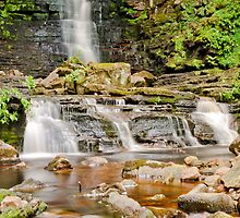 Mill Gill Force by Stephen Knowles