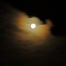 moon light. southern hemsphere. by tim buckley | bodhiimages