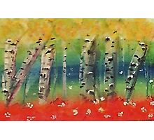 Aspen trees in abstract, watercolor Photographic Print