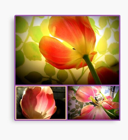 tulips tulips Canvas Print