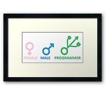 Female, Male, Programmer Framed Print