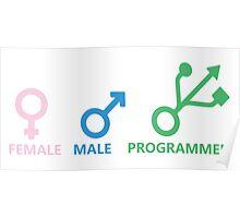 Female, Male, Programmer Poster