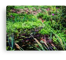 Lily pond Devon Canvas Print