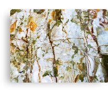 Burleigh Rocks 1 Canvas Print