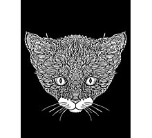 Tuxedo Cat - Complicated Cats Photographic Print
