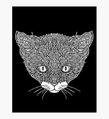 Tuxedo Cat - Complicated Cats Photographic Print