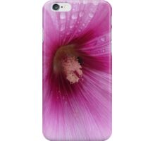 Refreshments - a Mallow flower macro iPhone Case/Skin