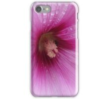 Refreshments - a Mallow flower macro iPhone Case/Skin
