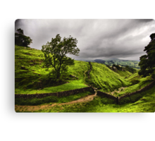 At The Top Of Cavedale Canvas Print