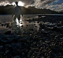From the Sea  by David  Preston