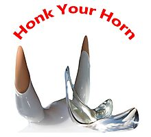 Honk Your Horn Photographic Print