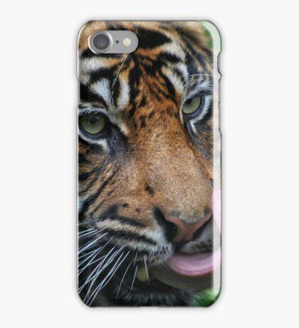Tiger Awaiting Food iPhone Case/Skin