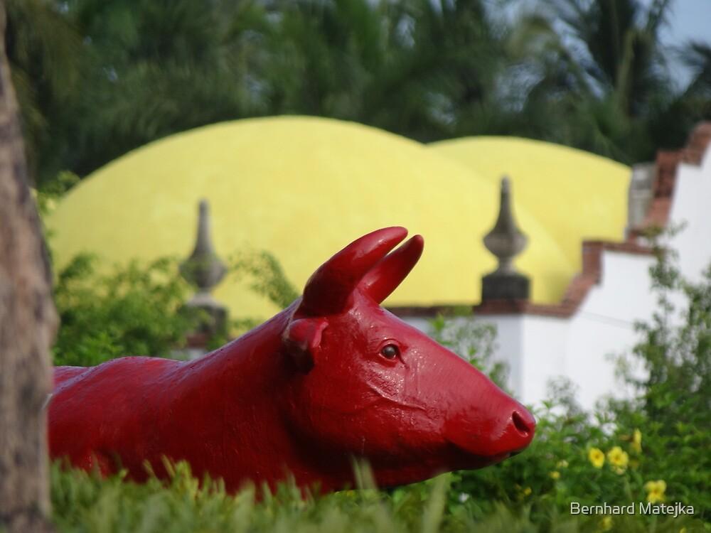 Red Bull - Toro Rojo  by Bernhard Matejka