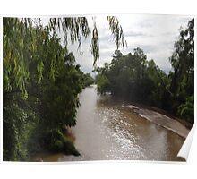 Wild Stream Landscape - Paisaje Fluvial Silvestre Poster