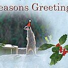 Meerkat greetings by Lissywitch