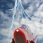 The Red Arrows - Eastbourne 2015 by Colin  Williams Photography