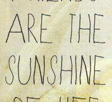 Sunshine & Friendship. Sticker