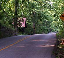 Cornbin next to Road by G. Cobble