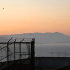 Alcatraz at sunset by KelseyClaire11