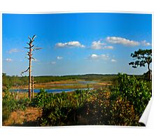 Lake View,  Dune #1. Catfish Creek, Lake Wales Ridge. Poster