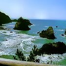 Harris Beach Oregon by Delights
