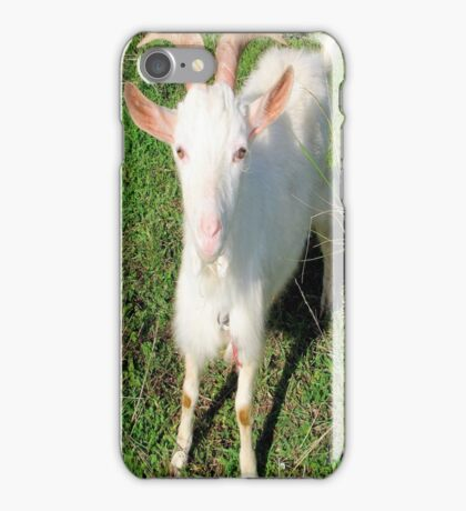 Billy 'The Goat' iPhone Case/Skin