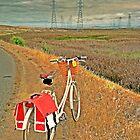 Following the Power Lines by Jennifer Hartnett-Henderson