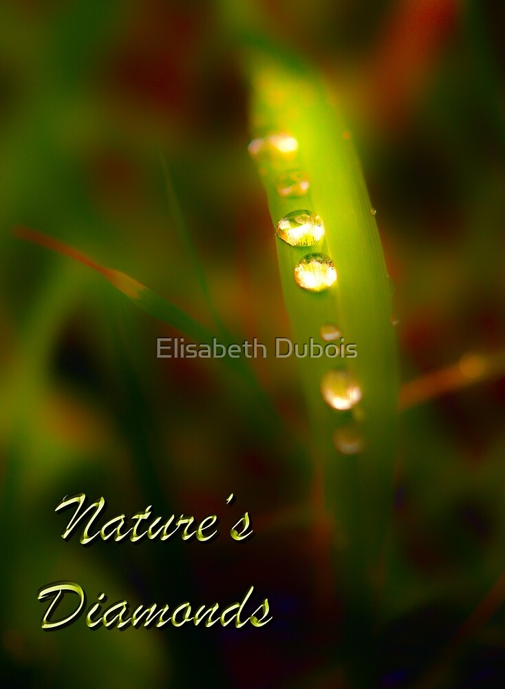 Nature's Diamonds surreal by Elisabeth Dubois