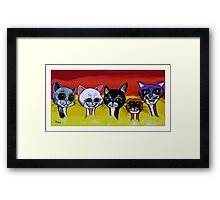 THE SPICE CATS Framed Print