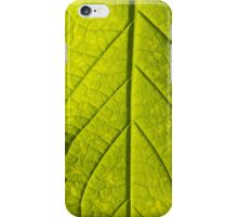 Leaf (iPhone & iPod case) iPhone Case/Skin