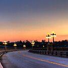 Colorado Street Bridge by Benjamin Curtis