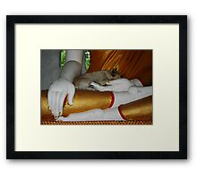 Safe in Buddha's Hands Framed Print
