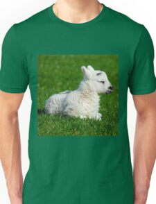 A Sleepy Newborn Lamb In A Field T-Shirt
