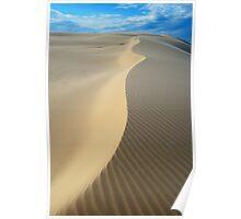 Sand Spine Poster