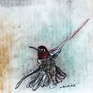 Ruby Throated Humming Bird by David M Scott