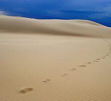 Steps of a Stranger by Anton Gorlin