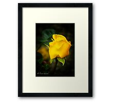 Yellow Bud Framed Print
