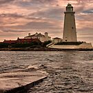 St Mary's Island by Trevor Kersley