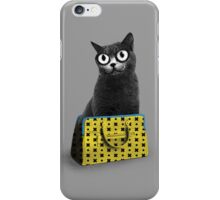 The Cat in the Bag of Tricks iPhone Case/Skin