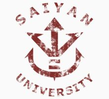 Saiyan University - Red version by karlangas