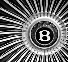 """""""B"""" Wheel by fernblacker"""