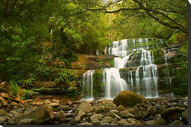 Liffey Falls - the greener view by Michael Matthews