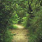The Last Journey III by Pauline Greefhorst