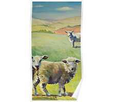 Sheep in the Spring Sunshine with Rolling Hills Poster